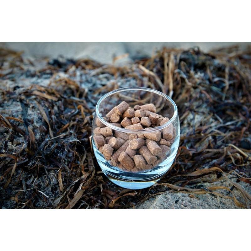 Küsten Hunde - Hundenahrung - Nova Canis 1kg
