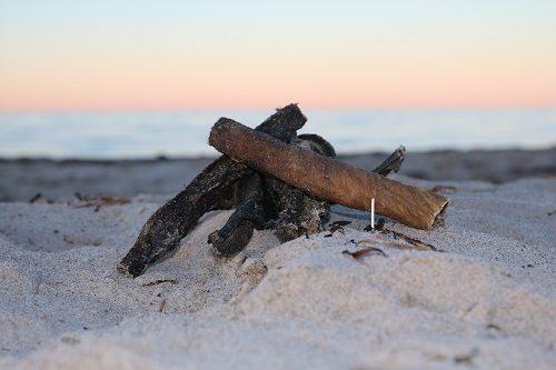 Küsten Hunde - Hundenahrung - Rinder Pansen